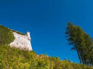 Castle in Pieskowa Skala