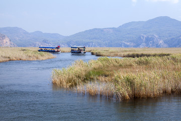 Boats on Dlayan river, Dalyan, Mugla
