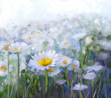 Fototapety Daisy flowers.Abstract flower oil painting