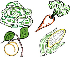 A variety of vegetable doodles