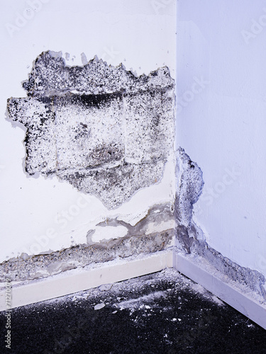 Damage due to damp in the basemant - 71270079