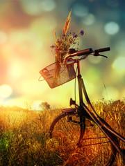 retro fahrrad im feld