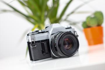 Historische Kamera mit Pflanzen