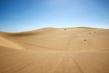 Spuren in der Wüste