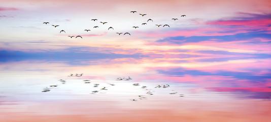 panoramica de reflejos en el mar