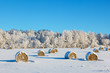 canvas print picture - Hay bales on a winter field