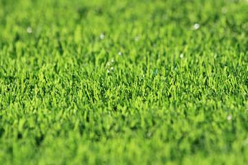 plastic green grass background
