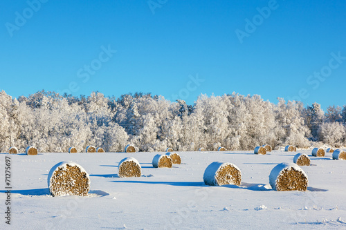 canvas print picture Hay bales on a winter field