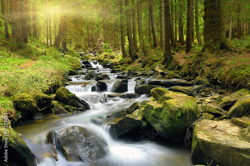 Wall Murals Waterfalls Green forest at spring time