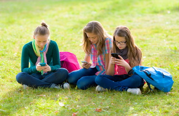 Teen girls on grass, using their mobile phones