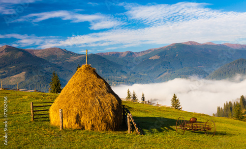 Stack of hay on a green meadow in the mountains © DmytroKos