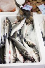 fish on sale