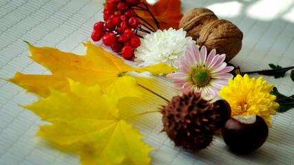 Осенние цветы, каштаны, листья, калина