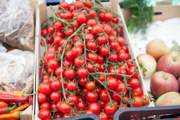 cherry tomato market