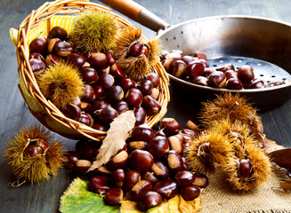 nice edible chestnuts