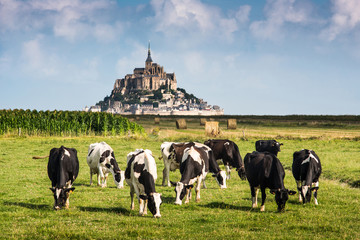 France Manche Mont Saint Michel bay listed as UNESCO World Herit