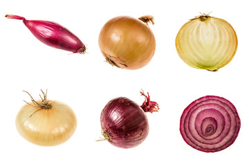 Set of onions of different qualities