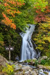 紅葉の白滝2