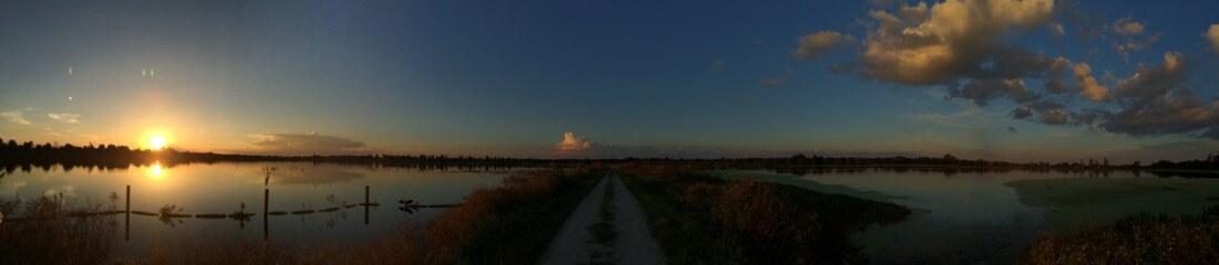 Swamp in Florida at sunset