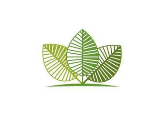 green eco logo Vector