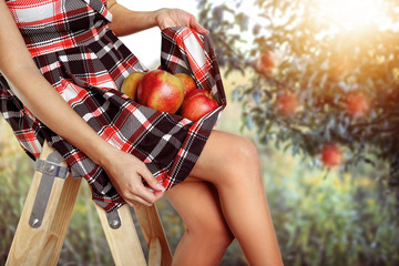 slim girl collects the apples