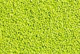 green plastic resin ( Masterbatch )