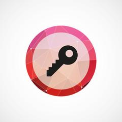 key circle pink triangle background icon.