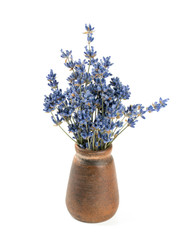 dried lavender in vase isolated on white