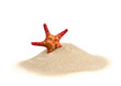 Leinwanddruck Bild - starfish on sand isolated on white