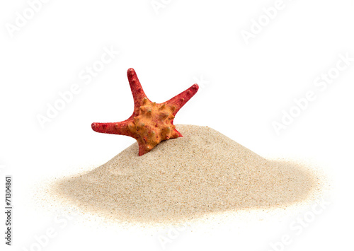 Leinwanddruck Bild starfish on sand isolated on white