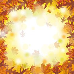 Outside Autumn Foliage Fall