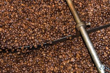 chicchi di caffè in una torrefazione a Granville a Vancouver