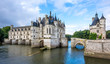 Постер, плакат: Chateau of Chenonceau with river Cher