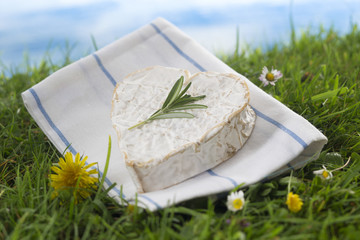 Neuchatel fromage  Normand