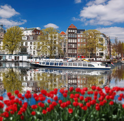 Amsterdam with boat on main canal against red tulips, Holland