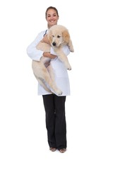 Smiling vet holding a puppy