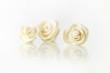 White plasticine roses