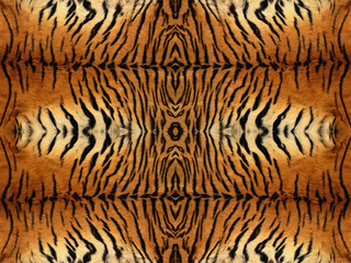 Tiger Fur Pattern
