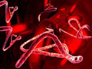3d render, illustration of Ebola virus, Microscopic view.