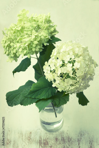 Keuken foto achterwand Hydrangea Vintage white hydrangea flowers in a vase on wooden table