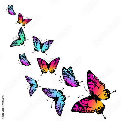 canvas print picture butterflies design
