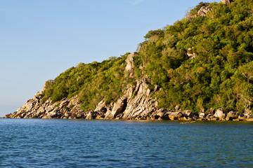 stone in thailand kho tao bay    south china sea