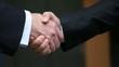 Business Partner. Handschlag, Händedruck