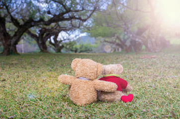 Two TEDDY BEAR brown color sitting on grass under the tree with