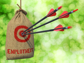 Employment - Arrows Hit in Red Target.