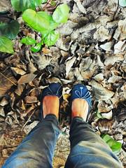 Scarpe blu tra foglie secche autunnali