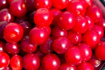 Appetizing red cherries