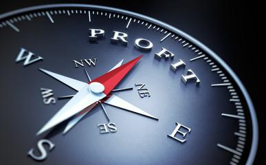 Kompass - Profit