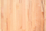 Part of the design of glued hardwood tree poster