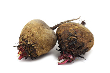 small beets on a white background